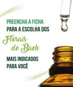 Ficha de Florais